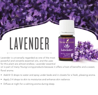 Lavender, Young Living Essential Oils