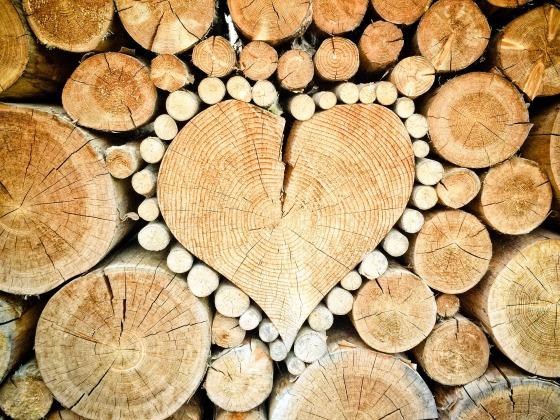 heart-1288420_1920.jpg