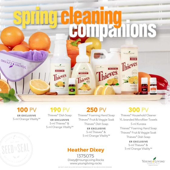 springcleaningcompanions